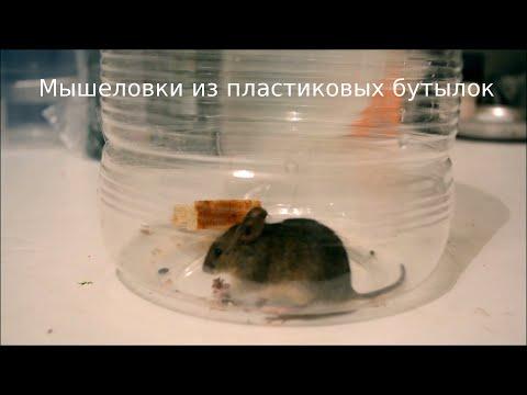 Мышеловки из пластиковых бутылок. Mouse Trap from PET. ペットボトルからのネズミ捕り。