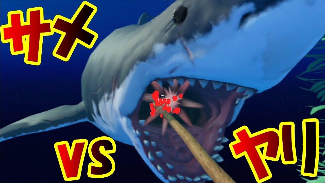 ホホジロザメの画像 p1_7