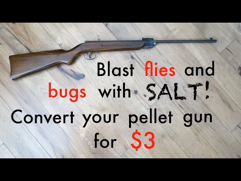 How to ● Convert your PELLET GUN to BUG-A-SALT for $3
