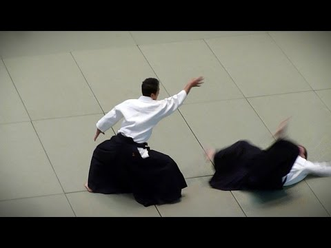 Aikido - Yasuno Masatoshi Shihan - 51st All Japan Aikido Demonstration 2013