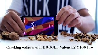 Cracking walnuts with Doogee Valencia2 Y100 pro! Corning Gorrila Glass! Same with TITANS2 DG700!