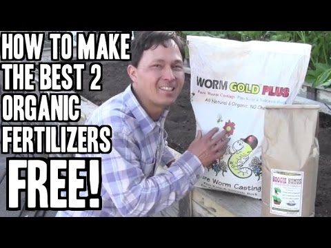 Best 2 Homemade Organic Fertilizers Anyone Can Make Free video