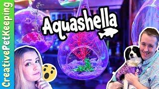FishTube Booth Behind the Scenes || 🐟 AQUASHELLA 2018: Underwater Fish Music Festival