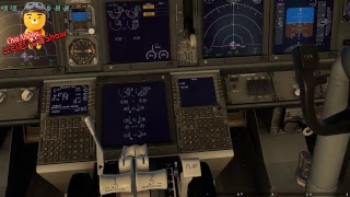 Xplane 11 Live Flight iN  Korea