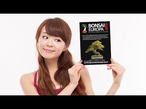 Bonsai Europa Exhibition