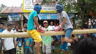 PINOY BOXING ON THE BAMBOO TREE