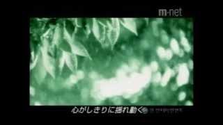 夏の香り  Summer Scent  여름향기  MV (日本語字幕)