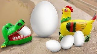 Chicken lay magic eggs. Crocodile, shark, dolphin - FMC I298M children's toys