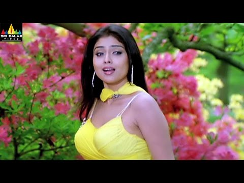 Shriya Video Songs Back to Back | Telugu Latest Songs Jukebox | Sri Balaji Video