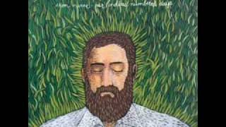 Watch Iron  Wine Teeth In The Grass video