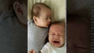 Twin Baby sucking Brother's Head looking for Milk So Funny & Cute