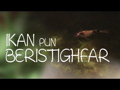 Ceramah Singkat : Ikan pun Beristighfar - Ustadz Ahmad Zainuddin, Lc.