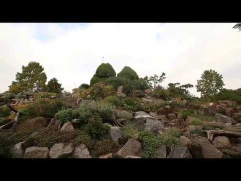 Dashain in Denmark- Radio programme
