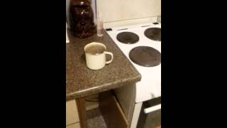 New video,..ghost moving cup