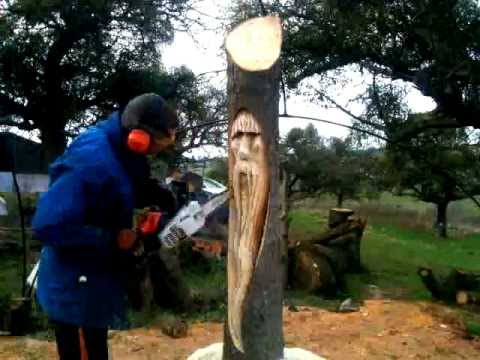 tree wizard chainsaw carving ( time lapse )