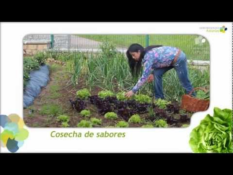 Asturias, cosecha de sabores