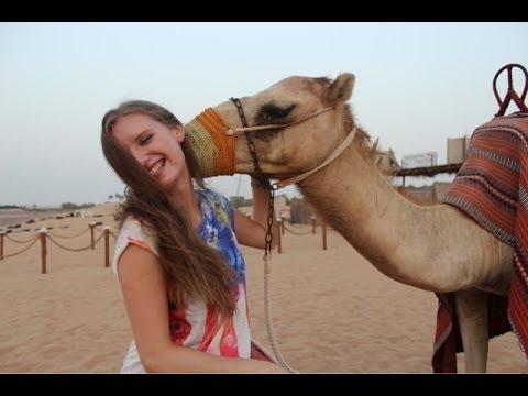 OASIS PALM TOURISM DESERT SAFARI DUBAI