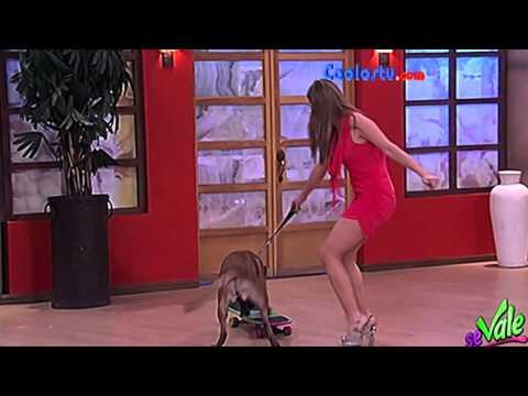 Yuliana Peniche Upskirt Microvestido HD