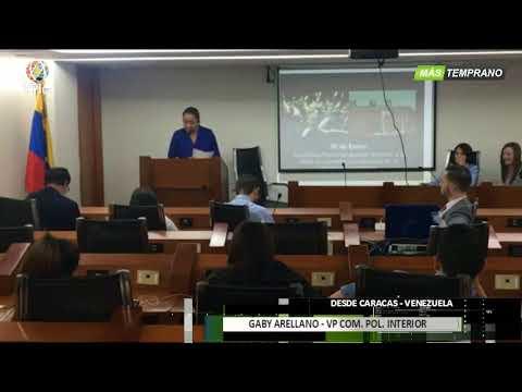 Venezuela- Luisa Ortega Díaz trabaja para remover a representante de Venezuela en la Haya -VPItv