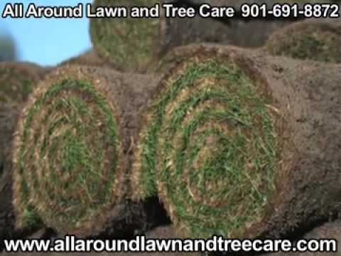 All Around Lawn and Tree Care, Munford, TN