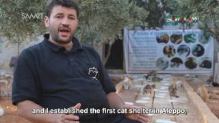 Syria | The First Cat Shelter in Besieged Aleppo