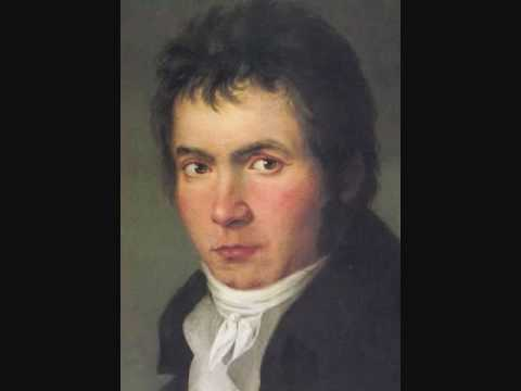 Beethoven: Symphony No. 1 - 1st Movement