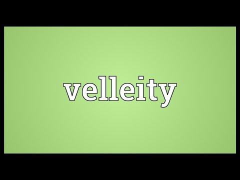 Header of velleity