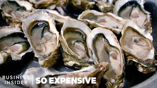 Why Oysters Are So Expensive | So Expensive