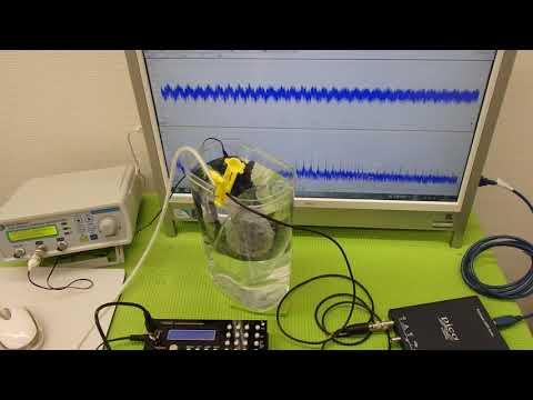 ジャンクノートPCを復活させる LIFEBOOK A561 ②/遺伝子テクノロジーについて <まとめ>/無能大統領、…他