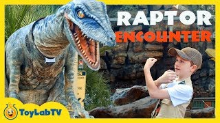 Jurassic World Raptor Adventure with Giant Dinosaurs & T-Rex for Kids at Universal Studios Hollywood