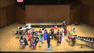 Evelyn Glennie - Concerto for solo percussions and chamber orchestra - IV