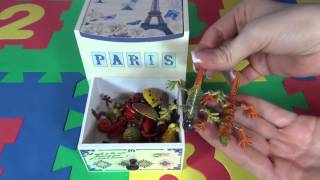 Toy animals for kids. Insects for kids