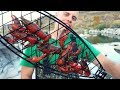 Roasting Big Crawfish Over an Open Fire - Catch n' Cook Crawdads and Bass! thumbnail