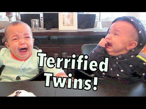 Terrified Twins! - October 04, 2014 - itsJudysLife Daily Vlog