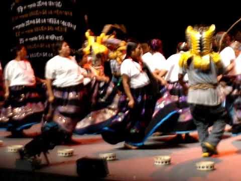 Nanas y Tigres de Zitlala en las Galas del Bicentenario