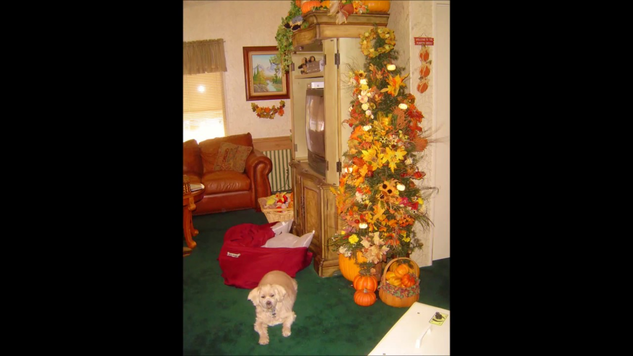 Mobile home decorating on a dime and more 2013 youtube for Decor on a dime