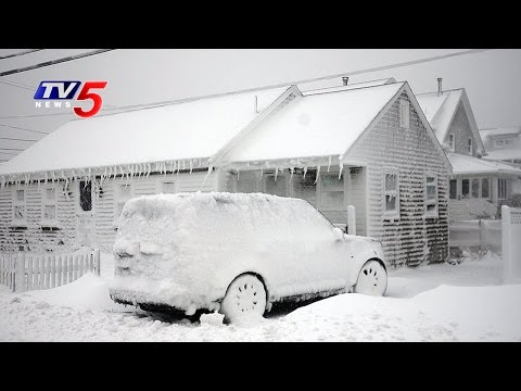 US Snowstorm | Flights Cancelled As Snow Storm Alert In USA | TV5 News