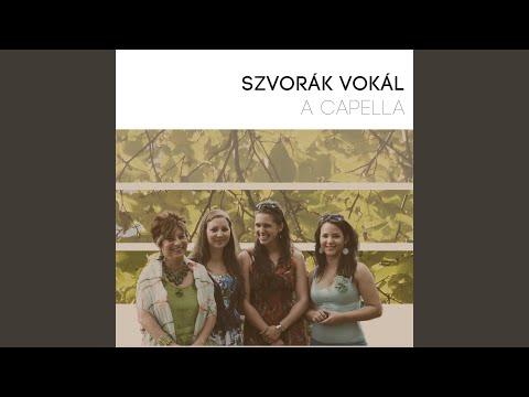 Szlovák-Magyar közös aratás és lakodalom pt. 2