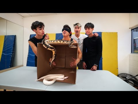 INSANE WHAT'S IN THE BOX CHALLENGE!
