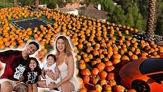 WELCOME TO THE ACE FAMILY PUMPKIN PATCH!!! **INSANE**