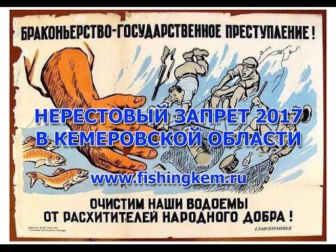 запрет на ловлю хариуса в кемеровской области