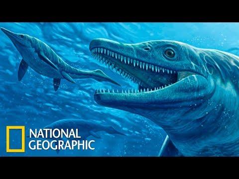 Морские чудовища древности | С точки зрения науки (Full HD)