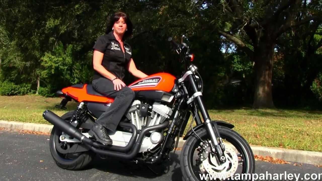 Harley Davidson Sportster 1200 >> Used 2009 Harley-Davidson XR1200 Sportster for sale in Spring Hill Fl - YouTube