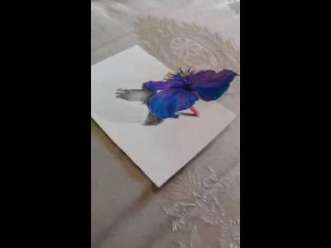 Drawing - 3d Illusions (realistic Flower)