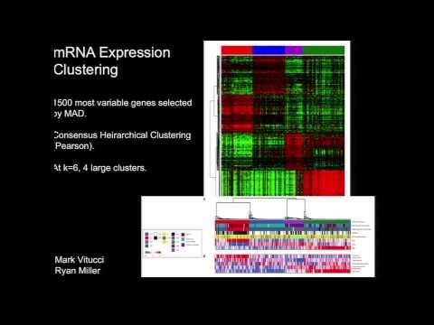 Comprehensive and Integrative Genomic Characterization of Diffuse Lower Grade Gliomas - Daniel Brat