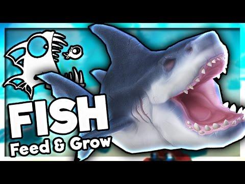 I ATE A SHARK! | Feed and Grow: Fish