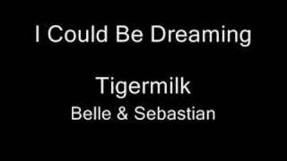 Watch Belle  Sebastian I Could Be Dreaming video