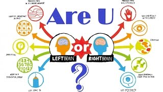 10 Easiest way to understand left & right brain difference