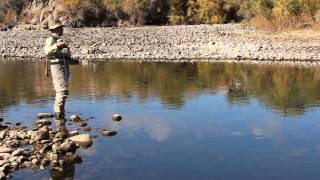 Fly Fishing the Salt River in Arizona part 3