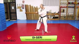 Técnicas de pierna 1 - Karate-do